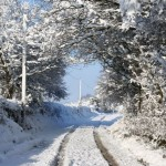 a-snowy-picture-taken-by-sharon-a-headway-client